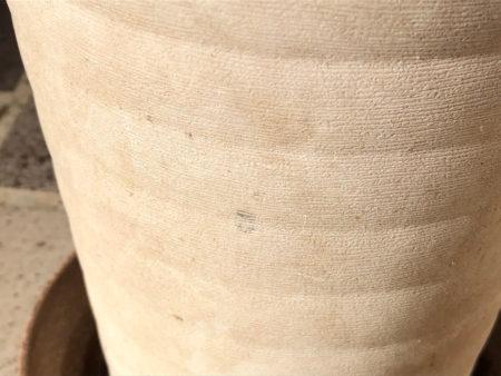劣化したプラスチック鉢の写真2