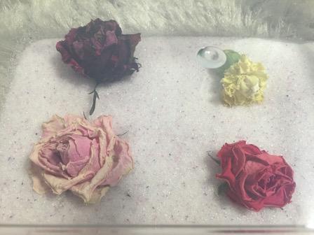 花のシリカゲル上置乾燥の写真