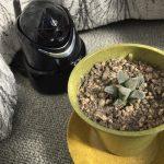 webカメラの植物栽培利用とIot化