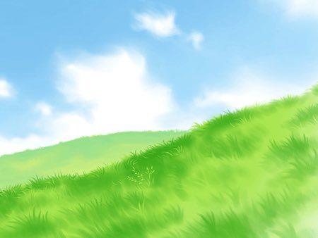 芝生の庭を作成するのにかかる費用
