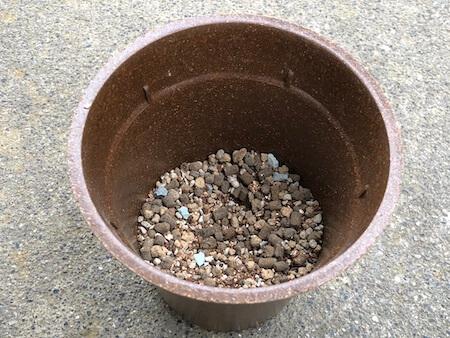 鉢に少し培養土を入れた写真