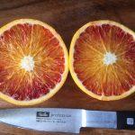🍊赤い果実の国産『ブラッドオレンジ』栽培