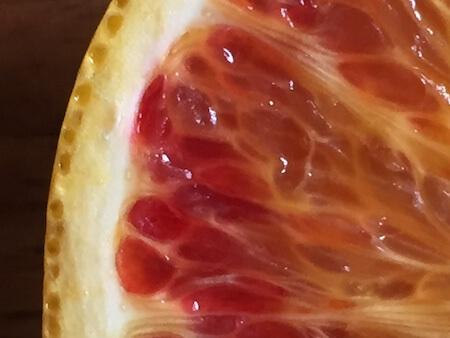 タロッコの果実粒写真