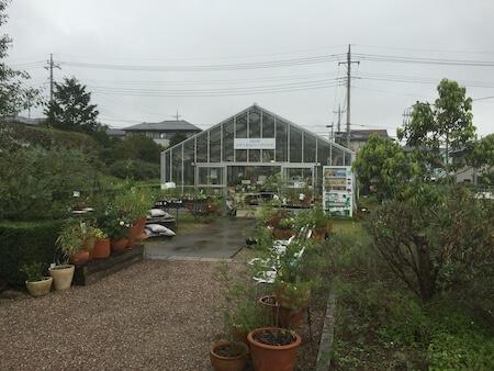 薬香草園の温室写真