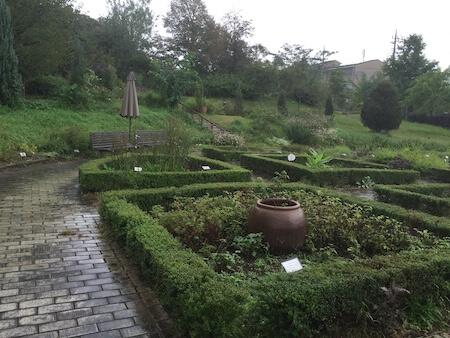 薬香草園のハーブガーデン2