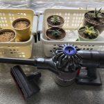 🏠小型掃除機が室内栽培の汚れ掃除に便利!