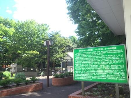 北大植物園の説明写真