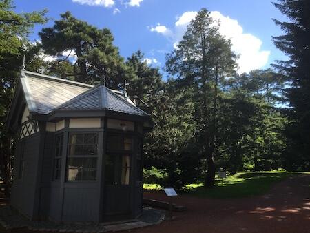 北大植物園の森林と建物写真