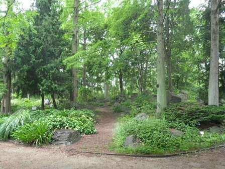 長居植物園の風景写真