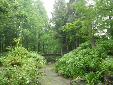 長居植物園の風景写真2