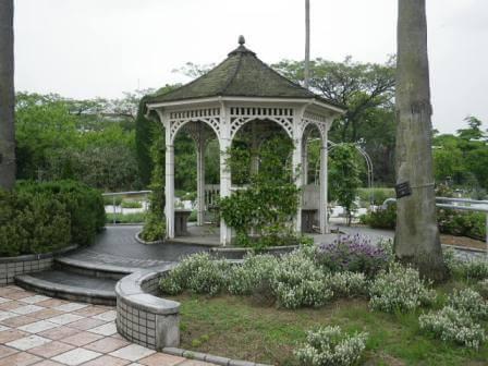 長居植物園のバーブ写真