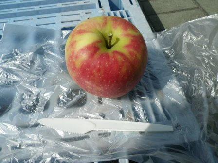 フルーツフラワーパークのリンゴ狩り写真5