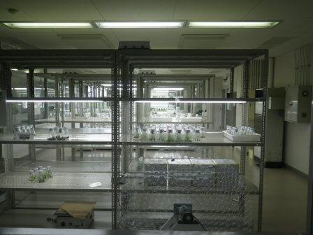 フルーツフラワーパークの培養施設写真