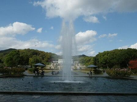 須磨離宮公園のバラ園写真3