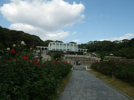 須磨離宮公園のバラ園写真5