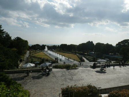 須磨離宮公園のバラ園写真2