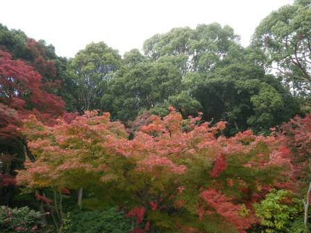 須磨離宮公園の写真4