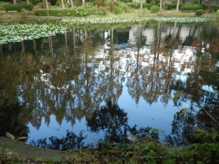 須磨離宮公園の写真6