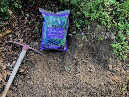 ライチ植え付け前の土壌改良写真